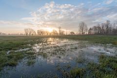 jgeenen-20180331-_IMG3202-HDR21 (jozefgeenen) Tags: gent landschap natuurreservaat ochtend open oudekale