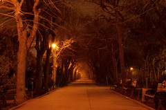 Cișmigiu Park (Valantis Antoniades) Tags: romania bucharest cismigiu park spooky haunted