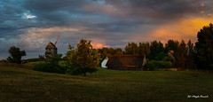 After storm (Magda Banach) Tags: 19thcentury canon moraczewo windmill afterstorm blue clouds colors dramatic evening field greaterpoland green koźlak landscape nature outdoor outside panorama plants poland silhouette sky summer sunset trees