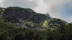 5 stawów-39 (wichrzu_wichrzu) Tags: mountains tatry forest trees pounds stawy 5stawów summer hiking active clearsky