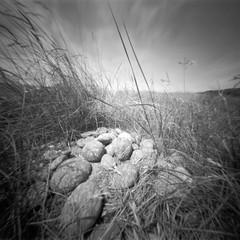 Stones (Rosenthal Photography) Tags: dänemark 20180703 asa125 6x6 realitysosubtle6x6 houvig steine nordsee ilfordfp4 dünen mittelformat urlaub rodinal15020°c15min ff120 epsonv800 analog schwarzweiss stones landscape denmark mood july summer sun danmark northsea beach dunes realitysosubtle rss ilford fp4 fp4plus rodinal 150 epson v800