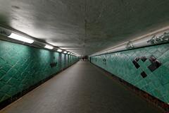 Unter der Spree (Pascal Volk) Tags: berlin köpenick friedrichshagen berlintreptowköpenick spree müggelsee lakemüggelsee grosermüggelsee spreetunnel wideangle weitwinkel granangular superwideangle superweitwinkel ultrawideangle ultraweitwinkel ww wa sww swa uww uwa fusgängertunnel pedestriansubway pedestrianstunnel sommer summer verano canoneos6d sigma24mmf14dghsm|art 24mmf14 24mmlens unpointquatre onepointfour 24mm dxophotolab