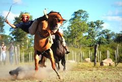 Rafael Cardoso (Eduardo Amorim) Tags: gaúcho gaúchos gaucho gauchos cavalos caballos horses chevaux cavalli pferde caballo horse cheval cavallo pferd crioulo criollo crioulos criollos cavalocrioulo cavaloscrioulos caballocriollo caballoscriollos pampa campanha fronteira bagé riograndedosul brésil brasil sudamérica südamerika suramérica américadosul southamerica amériquedusud americameridionale américadelsur americadelsud cavalo 馬 حصان 马 лошадь ঘোড়া 말 סוס ม้า häst hest hevonen άλογο brazil eduardoamorim gineteada jineteada