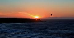 Scottish Summer Solstice Sunset (Troonafish) Tags: canon canon5d2 canon5dii canon5dmark2 canon5dmarkii 5d2 5dii 5dmark2 5dmarkii 2018 gavintroon gavtroon scotland scottish cullen moray morayshire morayfirth moraycoast sunset sunsets sun sunlight sunsetoverwater sunsetoversea rural bestview pinksky orangesky scottishcoastline scottishlandscape scottishscenery bowfiddlerock scenery sea seascape coast coastline coastal cullenbay portknockie solstice solsticesunset summersolstice summer summertime sky waves