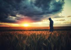 Aún no (franlaserna) Tags: sun iphone man sunrise sunset goldenhour field