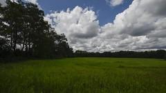 Six Mile Run Clouds (Thomas Kloc) Tags: sixmilerunpark clouds timelapse summer field