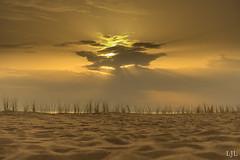 A7ii-1917 (Eljee-) Tags: rotterdam maasvlakte strand helmgras zand beach zonsondergang lucht wolken landschap cloud landscape sunset sky grass sony
