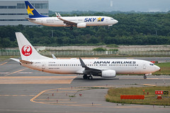 JAPAN AIRLINES B737-800(WL) JA330J 001 (A.S. Kevin N.V.M.M. Chung) Tags: aviation aircraft aeroplane airport airlines boeing cts newchitose skydesk plane spotting japan jal b737 b737800wl