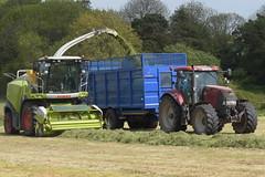 Claas Jaguar 870 SPFH filling a Broughan Engineering Mega HiSpeed Trailer drawn by a Case IH Puma 155 Tractor (Shane Casey CK25) Tags: claas jaguar 870 spfh filling broughan engineering mega hispeed trailer drawn case ih puma 155 tractor red cnh cloyne casenewholland traktor traktori tracteur trekker trator ciągnik silage silage18 silage2018 grass grass18 grass2018 winter feed fodder county cork ireland irish farm farmer farming agri agriculture contractor field ground soil earth cows cattle work working horse power horsepower hp pull pulling cut cutting crop lifting machine machinery nikon d7200