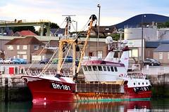 Lass O'Doune (calzer) Tags: harbour bm181 saturday june early eos canon morning fishing boat buckie brixham scallops lass odoune