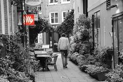 Goodbye (Mawel.P) Tags: street walk town tree bichrome amsterdam selective color