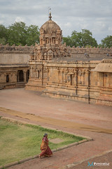 [India] Southern India - July 2018-20 (#vmivelaz) Tags: india inde asia asie voyage travel canon 1dx vinz wwwvincentmivelazcom vmivelaz vincent mivelaz photography co