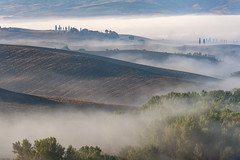 *Rolling Tuscany hills in the morning mist* (Albert Wirtz @ Landscape and Nature Photography) Tags: toskana tuscany toscana albertwirtz landscape paesaggi paysages campo nature natura natur campagna campagne italy italia italien europa europe mist nebel fog misty foggy rollinghills nebbia laniebla brouillard brume bruma neblig pienza sanquiricodorcia valdorcia valleyofthemorningmist taldermorgennebel landscapepoetry landschaftspoesie nikon sp146 zypressen cipressi tree acker fields feld albertwirtzlandschaftsundnaturfotografie albertwirtzphotography albertwirtzlandscapeandnaturephotography professionell