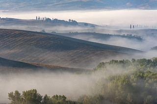 *Rolling Tuscany hills in the morning mist*