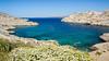 Contempler le rêve ! (watbled05) Tags: borddemer ciel couleurs extérieur fleurs herbe plante marseille montagne mer océan paysage rochers végétaux