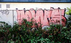graffiti in Amsterdam (wojofoto) Tags: amsterdam nederland netherland holland graffiti streetart wojofoto wolfgangjosten dins