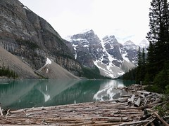 MORAINE LAKE (Rob Patzke) Tags: mountain lake glacier logs trees pine reflection canada snowcap water snow logjam nature color panasonic lumix lx100 ice peak