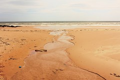 SOFC1-10 Water meets the sea, Sands of Forvie (timonrose1) Tags: sandsofforvie aberdeenshire coast