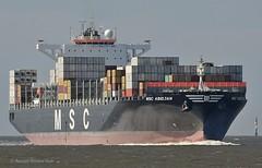 MSC Abidjan (Bernhard Fuchs) Tags: boat cargo cargoships cuxhaven containerschiff containerschiffe elbe fracht frachtschiff frachtschiffe msc nikon schiffe ship ships vessel water schiff boot wasser meer cargoship