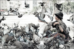 Tender love (Eva Haertel) Tags: eva canon5dmarkiii people frau woman bird dove pigeon strasse street fliegen fly flutter flattern hut hat sitzen sit ground boden stimmung atmosphere entsättigt desaturated unschärfe blurr humor flügel wing person haertel riodejaneiro brasilien brasil copacabana bedeckt cloudy