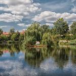 Schwanensee in der Lutherstadt Wittenberg thumbnail