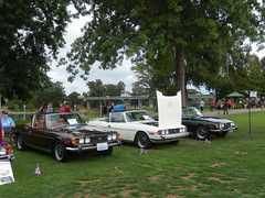 Stag (picsbyjulius) Tags: atdi2018 tr2 tr3 tr4 tr250 tr6 tr7 tr8 gt6 spitfire stag herald mayflower 4cylinder 6cylinder v8 british uk classic cars convertibleragtop engine reflectivestripe hardtop vintage bling roadster softtop sportscar rallye racing triumph tr ptoa tyee bctr tcsc travelers