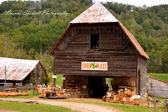 It's going to be Pumpkin time again before we know it! (Dianne Sherrill Photography) Tags: barn pumpkins autumn mountains halloween farm vallecrucisnc