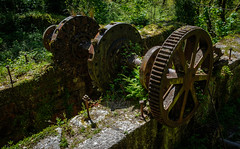 Rusting drive wheels, Carmears Wheelpit, Ponts Mill. (Rogpow) Tags: cornwall luxulyan pontsmill carmears carmearswheelpit wheelpit foweyconsols treffry chinastone industrialhistory industrialarchaeology industrial industry cornishmining cornishminingworldheritagesite copper abandoned derelict decay disused dilapidated ruin rust rusty fujifilm fujixpro2 fuji