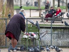MrUlster 20170310 - Paris - P3103229 (Mr Ulster) Tags: pigeons france elderly park paris travel feeding