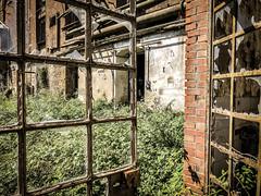 IMG_4151 (original-sam) Tags: sugarfactory cecina italy abandonedplace iphonex architecture industry lostplace urbanexploration urbex