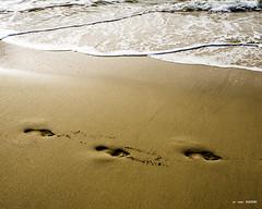 Pasos en la arena y en la VIDA (Jabi Artaraz) Tags: pasos camino arena vida