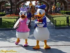 Daisy et Donald (Disneyland Dream) Tags: shanghai disneyland park personnage character daisy donald duck