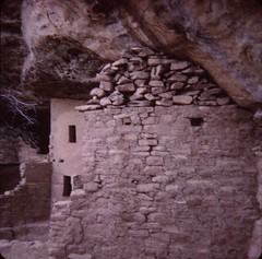 Mesa Verde National Park - Spruce Tree House (Stabbur's Master) Tags: mesaverdenationalpark nativeamericanruins nationalpark usnationalpark colorado cliffdwellings sprucetreehouse anasazi westernusa westernus west