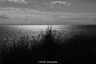 The North sea.