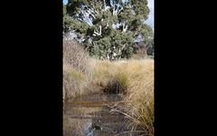 LOT 187 FLACKNELL CREEK ROAD, Gunning NSW