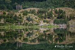 Lake Tutira, Hawkes Bay (flyingkiwigirl) Tags: aircurtain bird boundarystream camp family hawkesbay lake laketutira lakewaikopiro napier opouhai quality walk water