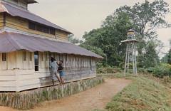 Muyu-Mandobo-003c (Stichting Papua Erfgoed) Tags: stichtingpapuaerfgoed pace pietvanmensvoort msc papua nieuwguinea nederlandsnieuwguinea irianjaya