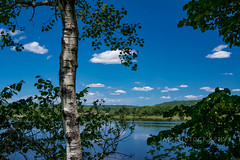 The Pause Between Trees (jah32) Tags: fredericton newbrunswick canada frame framing trees clouds sky river rivers stjohnriver blue peaceful peace reflections reflection