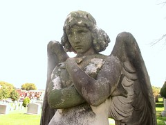 The Monteverde Angel Copy in Green-Wood Cemetery 7709A (Brechtbug) Tags: grieving angel white marble covered lichen greenwood cemetery statue wings cemeteries graveyard tomb brooklyn 2018 nyc new york city 08122018 weeping 2004 sooty thinking nearer that civic virtue