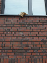 Schulbibliothek (mkorsakov) Tags: dortmund city innenstadt unionviertel dortmunderu berufsschule wand wall fenster window buch book