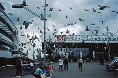 "23.6.2018 Berlin Gesundbrunnen "" Flugverkehr"" (rieblinga) Tags: berlin gesundbrunnen db bahnhof 2362018 tauben aufgeschreckt analog m7 agfa ct precisa 100 diafilm"