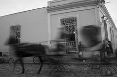 GIDDY UP II (annemcgr) Tags: cuba trinidad horse carriage rider street slowmotion blur monochrome blackwhite fineart