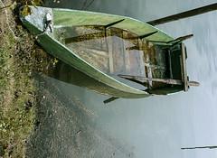 trasimeno_barche_07 (Marco Tuteri) Tags: barche trasimeno lago san feliciano
