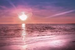H A L O (Katja van der Kwast) Tags: 2018 sea zee strand beach zuidholland nederland netherlands seascapes zon sun sunset zonsondergang wolken clouds pink blue blauw roze