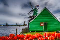 Moulins de Hollande (Nogueira Leitâo Fine Art Photographe) Tags: hollande
