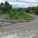 Greybull River (Meeteetse, Wyoming, USA) 6