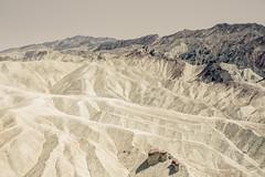_62A7253 (gaujourfrancoise) Tags: unitedstates etatsunis wildwest ouestaméricain zabriskiepoint beige blanc white gaujour california californie valléedelamort deathvalley