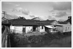 HengMian30 (nickthepluto) Tags: shanghaigp3 zeiss ikon zm biogon 2828 bw d76 film