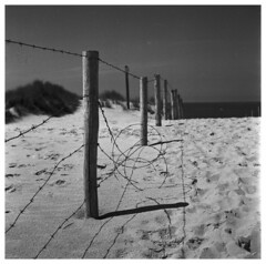 Disturbance (Mark Dries) Tags: markguitarphoto markdries yashicamat lumaxar orangefilter ilford fp4 r09 125 900 scan dunes fence mediumformat 6x6 filmphotography film tlr