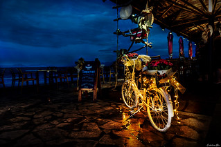 Night Rider...